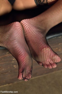 Sexy feet covered in fishnet stockings