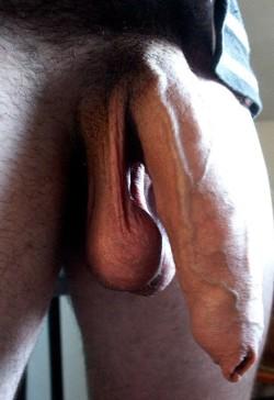 Big Hanging Uncircumcised Cock