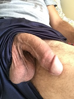 Fat Cock and Balls Hanging Out Master's Shorts