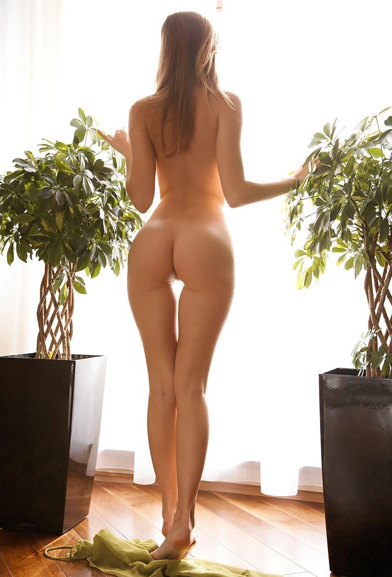 Женские фигуры сзади голые