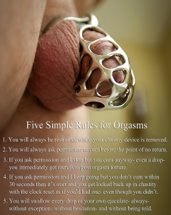5 Rules for Sissy Chastity Slave Orgasms