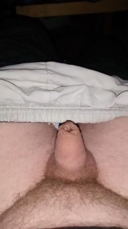 Tiny dick Tuesday