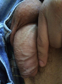 Grown Man with a Boner the Size of a Pinky