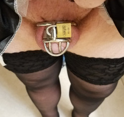 Acorn Clitty Locked in Chastity