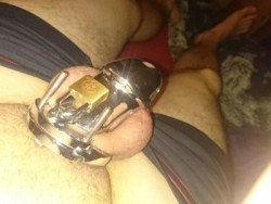 After 210 days in chastity I shrunk my penis