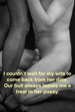 I always get an erection when I lick my wife's used pussy!