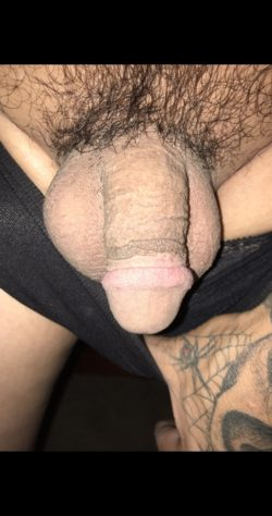 Little Sissy Dick