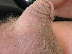 My half inch
