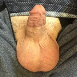 Fully hard dick and big balls