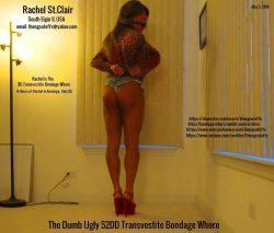 The Dumb Ugly 52DD Transvestite Bondage Whore