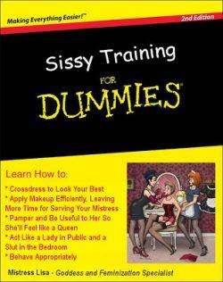 Sissy training for Dummies