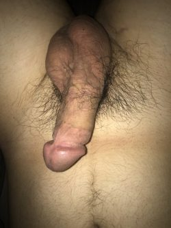 Rock hard Asian dick, what do you think?