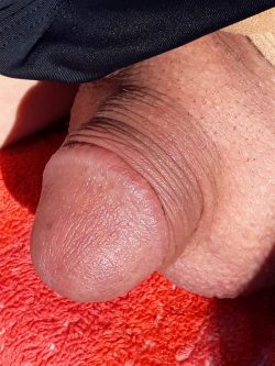 I'm proud of my manly beautiful cock. Circumcised and clean -…