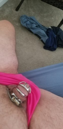 My tiny caged cock with pink panties