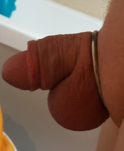 Little clit before chastity … what cha think ?Fucking lock that…