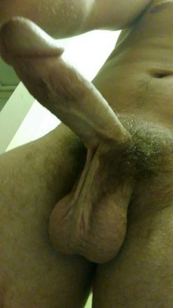 Rate my cock and balls