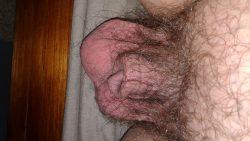 Spot the dick