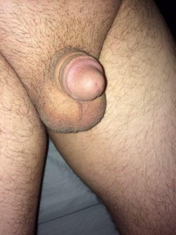How would you describe my dick……and my balls