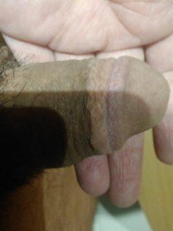 Brazilian Cuckold Sissy (Cuckold SPH Story)
