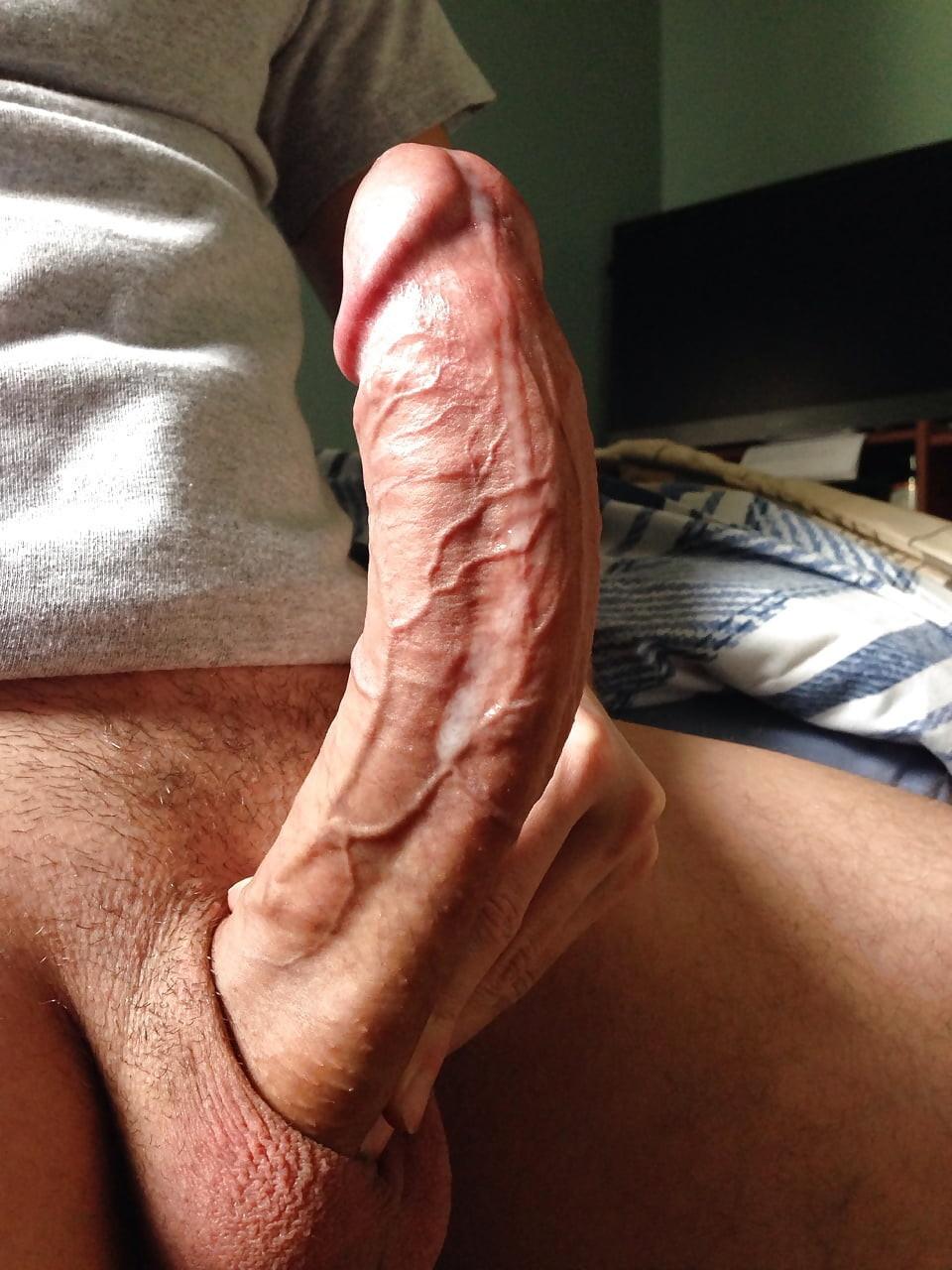 Gorgeous big huge cocks dicks carey