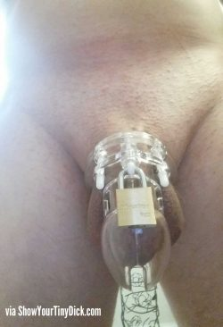 Hoping for a chastised cuckold relationship with my wife