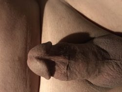 My clean shaven cock