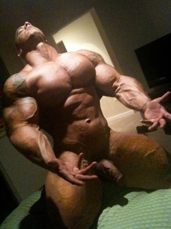 Why I am a sissy ! Why I am a sissy ! Can't stop jerking off for muscle and big cock. $$ r ...