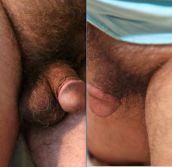 Comparing my hairy bugger with another