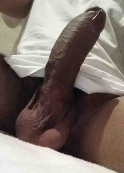 Rate my Asian dick please