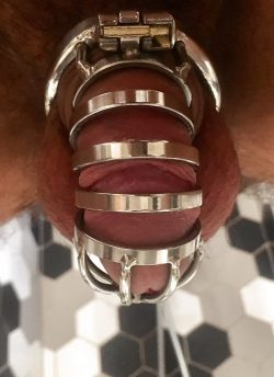 Shiny Steel Cock Cage for Losers