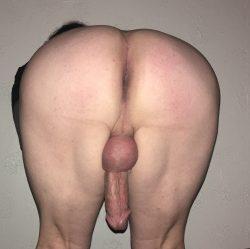 Sissy ass