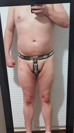 Full belt
