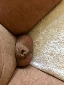 Zip tied little dick