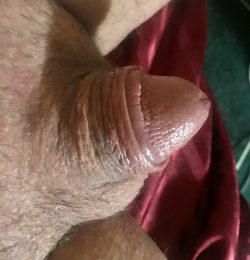 Needs a shave