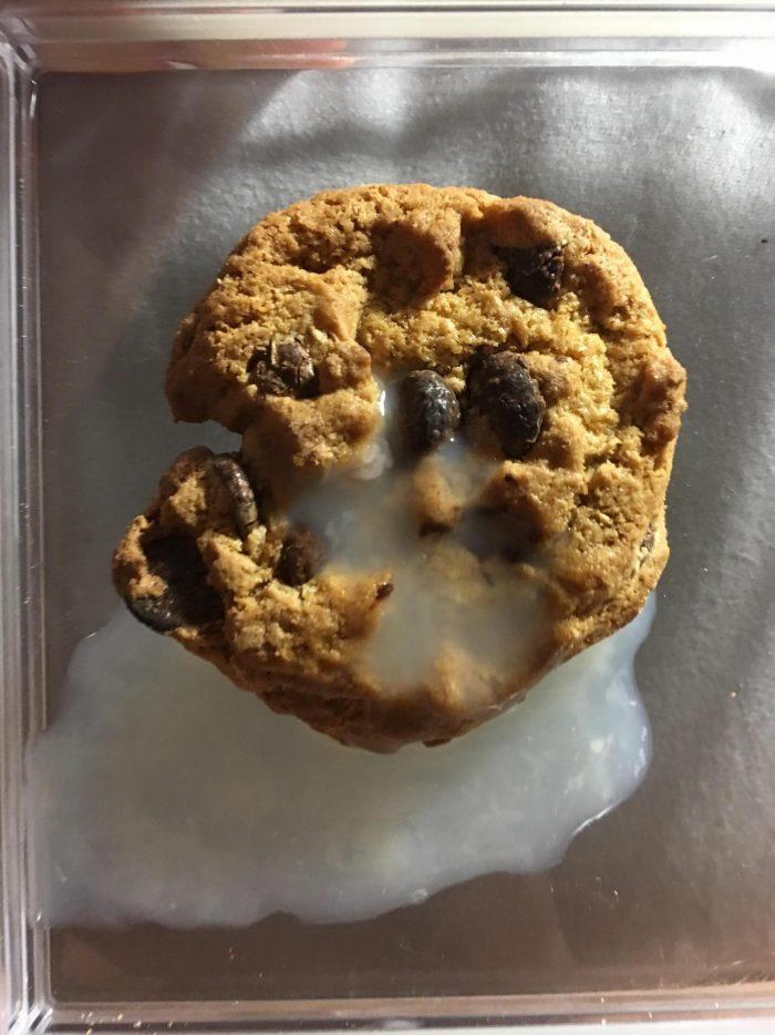 Cum glazed cookies - Freakden