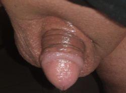Tiny penis