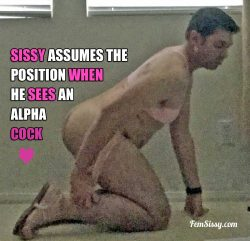 Sissy assumes the position for Alphas