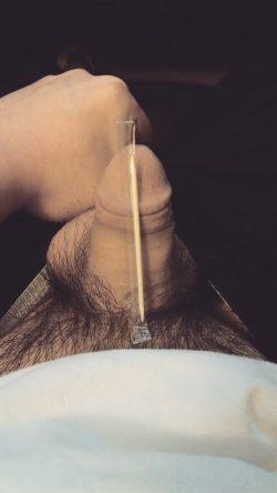 Happy Birthday to Toothpick Dick