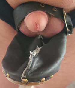 My dick is so small i can put it between it