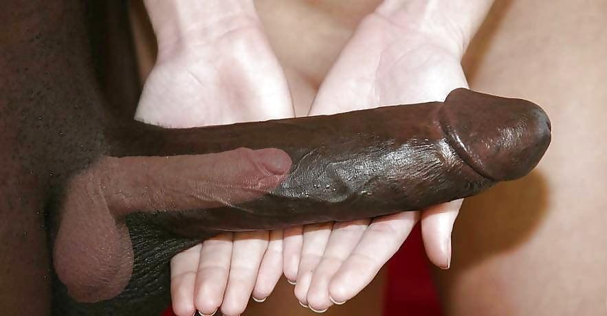 Big black cocks and big black lady