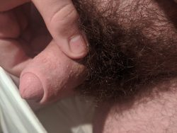 Please rate my penis?