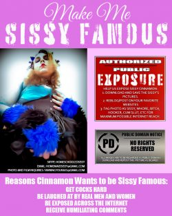 Sissy Famous…What All Sissies Deserve.