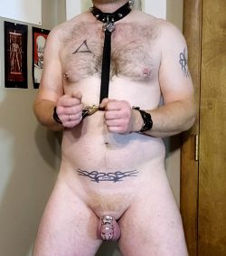 collared, bound and caged