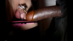 Head to head if it can be called that the head of the dick is as big as the whole Dickclit