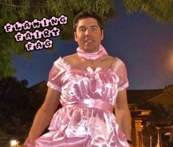 Flaming sissy fairy marky