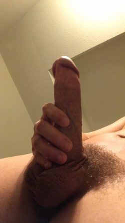 my cuck cock, comment as see fit.