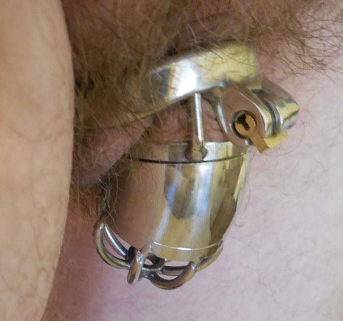 Chastity clit