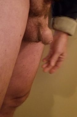 1.5″ soft, no shaft, just a penis head retracted into foreskin