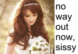 No way out now sissy