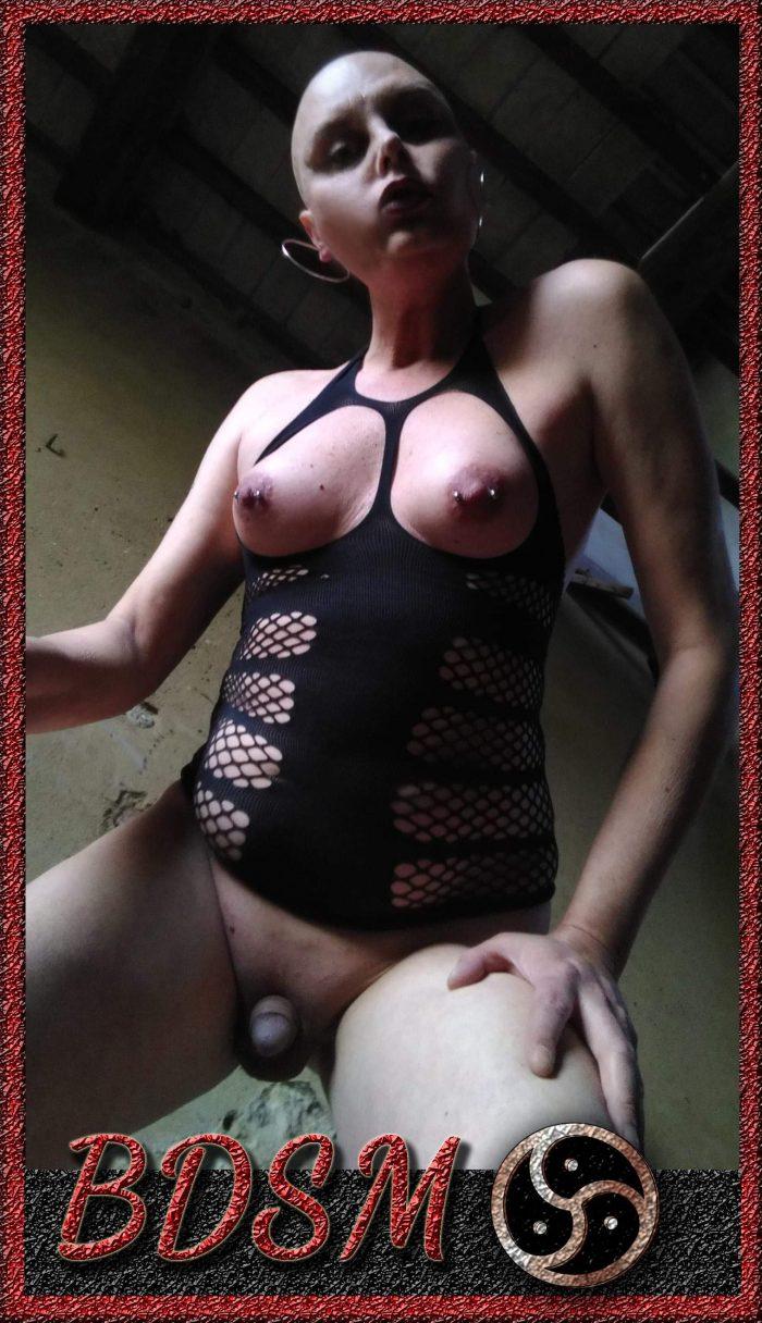 Bald Sissy slave